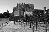 Katedralen i palma de mallorca, Spanien — Stockfoto