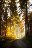 Beautiful autumn mountain landscape — Stock Photo