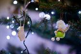 Christmas concept photo — Stock Photo