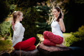 Outdoor yoga session in beautiful place - women exercise — ストック写真