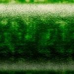 Background dinosaur skin — Stock Photo #13361705