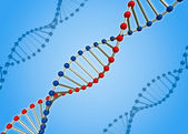 The DNA molecule — Stock Photo