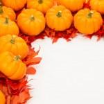 Fall border of small pumpkins — Stock Photo #11871266