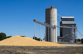 Grain elevator with pile of grain — Stock Photo