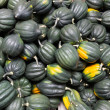 Acorn or winter squash on display — Stock Photo
