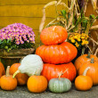 Fall decorations of pumpkins and flowers — Stock Photo #13558669