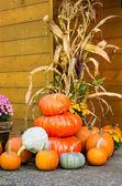 Fall decorations of pumpkins — Stock Photo