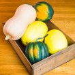 Wooden box of winter squash — Stock Photo