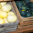 Winter squash stored in crates — Stock Photo #15677229