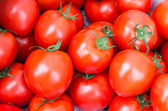 Display of red ripe tomatoes — Stock Photo