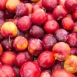 Red ripe plums at the market — Stock Photo