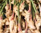 Display of fresh ginger root — Stock Photo