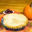 Turkey pot pie with cranberries and pumpkin — Stock Photo #17869425