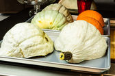 Blue Hubbard squash halves ready to bake — Stock Photo