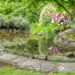 Landscaped garden scene with stone edged pond — Stock Photo #18147967