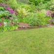 ������, ������: Landscaped garden scene with blooming shrubs
