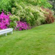 Landscaped garden scene with white bench — Stock Photo