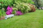 Landscaped garden scene with white bench — Stok fotoğraf