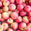 Fresh Honey Crisp apples on display — Foto Stock