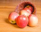 Red apples in a cornucopia — Stock Photo