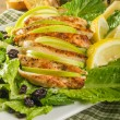 Apple cranberry chicken salad — Stockfoto