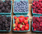 Boxes of fresh berries just picked at the market — Stock Photo