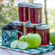 Homemade blackberry apple jam — Stock Photo #29330163