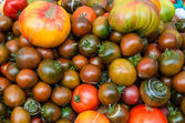 Tomatoes on display at a market — Stock Photo