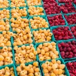 Red and yellow raspberries in boxes — Stock Photo