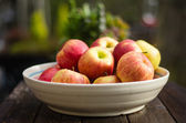 Bowl of fresh picked apples — Stock Photo