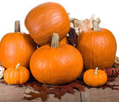 Pumpkins indian corn and fall leaves — Stock Photo