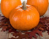 Pumkins and fall leaves for decoration — Stock Photo
