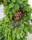 Fresh Christmas decorations with greens — Stock Photo