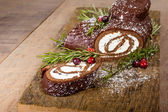 Chocolate Yule log with cranberries — Stock Photo