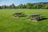 Picnic tables in public park — Stock Photo