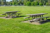 Picnic tables in public park — Stock Photo