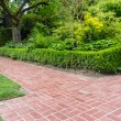 Green hedge and brick pathway in a garden — Stock Photo #48441589