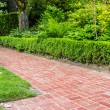 Green hedge and brick pathway in a garden — Stock Photo #48441595
