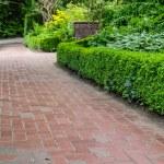 Brick pathways through a garden — Stock Photo #48441597