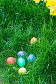 Easter eggs in a grassy lawn — Stockfoto