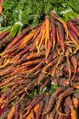 Fresh carrots at the market — Stock Photo
