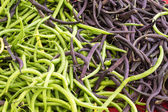 Fresh green beans on display — Stock Photo