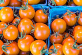 Orange cherry tomatoes at the market — Stock fotografie