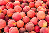 Fresh picked peaches on display — Stock Photo