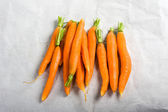 Peeled carrots with stems — Stock Photo