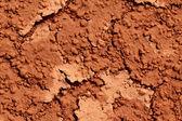 Textura del suelo mojado — Foto de Stock