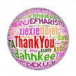 Thank you globe concept word in many languages of the world. — Stock Photo #32793381