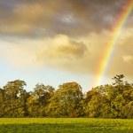 Постер, плакат: Rainbow in Dublin Ireland
