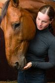 Tidbit to horse — Stock Photo