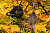 Rake and wheelbarrow — Stock Photo